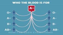 Cross match & Blood groups