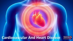 Cardiovascular And Heart Disease