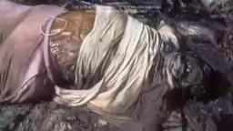 Full Human Dead Body Decomposing Video
