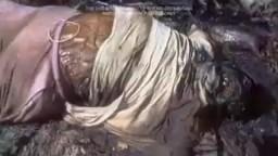 Real Human Body Decaying Process