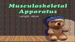 Musculskeletal examination