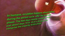 Ovulation Symptoms – Top 10 Signs of Ovulation in Women