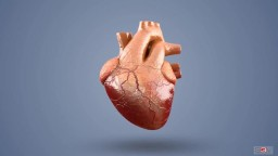 Heart Stent and Angioplasty - 3D Medical Video Animation