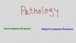 Innate Vs Adaptive Immune System