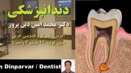 01_dinparvar_Endodontics