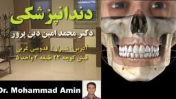 02_dinparvar_Orthodontics