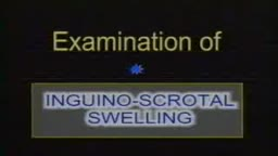 Inguino-Scrotal swelling