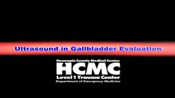 Evaluating the Gall Bladder with Ultrasound