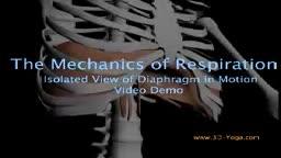 Mechanics of Respirarion