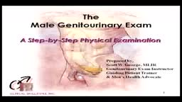 Male Urogenital Examination