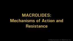 Macrolides Mechanisms of Action and Resistance
