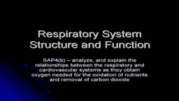 Respiratory System Structure and Functions