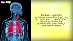 Get Rid of Mucus in Lungs
