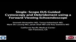 Endoscopic Transgastric Pancreatic Necrosectomy using a Forward Viewing Echoendoscope