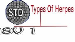 Genital Or Oral Herpes