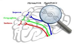 ANTIDEPRESSANTS - SSRIs, SNRIs, TCAs, MAOIs, Lithium